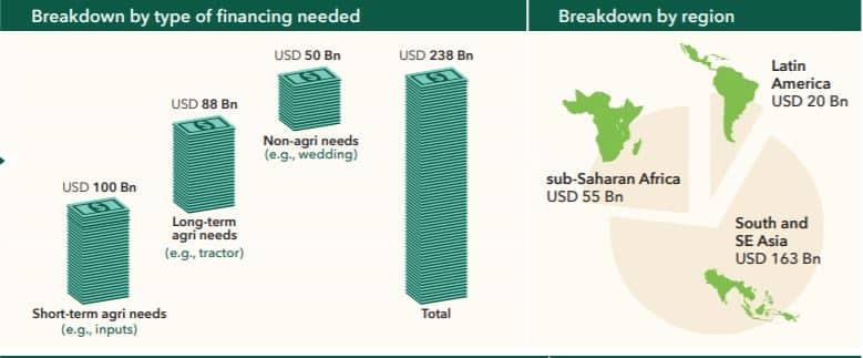 Diagram showing financing gap of smallholders worldwide